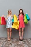 Счастливые молодые дамы держа хозяйственные сумки Стоковые Изображения