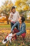 Счастливые молодые пары при собаки играя outdoors в парке Стоковое фото RF