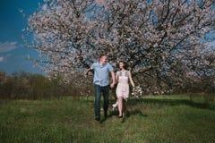 Счастливые пары бежать в саде цветеня держа рука об руку Стоковое фото RF