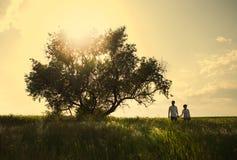 Счастливые пары внешние, летнее время Стоковые Изображения RF