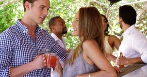 Счастливые пары наслаждаясь пить на счетчике бара сток-видео