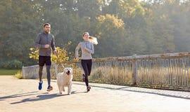 Счастливые пары при собака бежать outdoors Стоковая Фотография RF