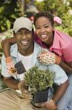 Счастливые пары садовничая совместно Стоковое фото RF