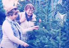 Счастливые пожилые женщины выбирая спрус Стоковые Фото
