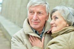 Счастливые пожилые пары в природе осени Стоковое фото RF