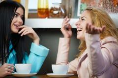 Счастливые подруги говоря в кафе Стоковые Изображения