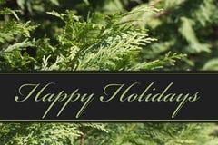 Счастливые праздники приветствуя стоковое изображение
