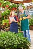 Счастливые работники работая в магазине питомника Стоковое фото RF