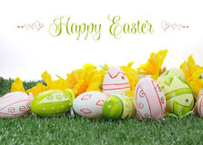 Счастливые розовые пасхи красочные и зеленые пасхальные яйца с желтыми daffodils на зеленой траве стоковые фотографии rf
