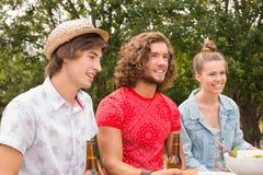 Счастливые друзья в парке имея обед Стоковые Фотографии RF