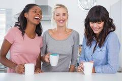 Счастливые друзья имея кофе совместно Стоковая Фотография RF