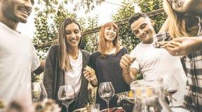 Счастливые друзья имея потеху выпивая красное вино есть на приём гостей в саду