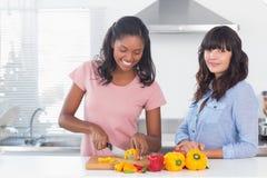 Счастливые друзья подготавливая овощи Стоковая Фотография RF
