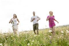 Счастливые друзья тратя свободное время совместно в a Стоковые Фото