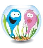 Счастливые рыбы свадьбы Стоковое фото RF