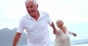 Счастливые старшие пары имея потеху сток-видео
