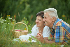 Счастливые старшие пары отдыхая на траве Стоковая Фотография