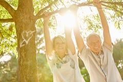 Счастливые старшие пары под деревом Стоковое Изображение