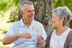 Счастливые старшие пары провозглашать каннелюры шампанского на парке Стоковое Изображение