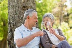 Счастливые старшие пары провозглашать шампанское на парке Стоковое фото RF
