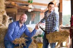 Счастливые фермеры tedding солома стоковое фото rf