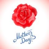 Счастливые цветки красной розы дня матерей красивые зацветая на белой предпосылке карточка 2007 приветствуя счастливое Новый Год иллюстрация штока