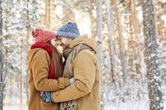 счастливые любовники стоковые изображения rf