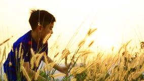 Счастливый азиатский мальчик с цветком травы двинул ветром лета видеоматериал