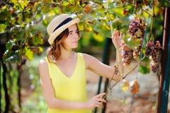 Счастливый женский фермер работая в саде плодоовощ Стоковое Изображение RF