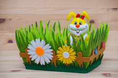 Счастливый зайчик пасхи в гнезде с травой и цветком Стоковое фото RF