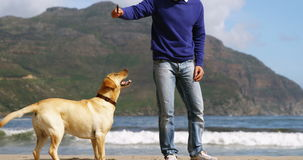 Счастливый зрелый человек играя с собакой на пляже акции видеоматериалы