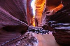 Счастливый каньон Стоковое Изображение RF