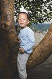 Счастливый мальчик на дереве стоковые изображения