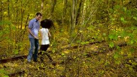 Счастливый молодой любить в парке осени сток-видео