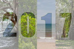 Счастливый Новый Год 2017 в лесе темы перемещения, мангрова, море, Beac Стоковое Изображение