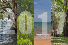 Счастливый Новый Год 2017 в лесе темы перемещения, мангрова, море, Beac Стоковое Фото