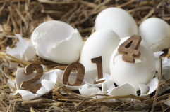 Счастливый Новый Год 2014, концепция яичек Стоковое Изображение