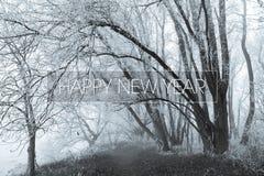 Счастливый Новый Год на замерзая forrest предпосылке Стоковое фото RF