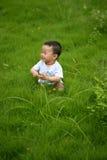 Счастливый ребенк в траве Стоковое Фото