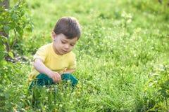 Счастливый ребенк наслаждаясь солнечным днем поздним летом и осени в природе на зеленой траве Стоковая Фотография RF