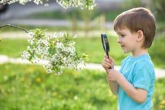 Счастливый ребенк наслаждаясь солнечным днем поздним летом и осени в природе на зеленой траве Стоковые Изображения