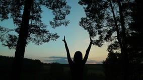 Счастливый силуэт молодой женщины против неба поднимает руки вверх в воздухе акции видеоматериалы