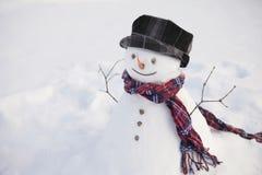 Счастливый снеговик в поле Стоковая Фотография RF