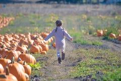 Счастливый ход девушки для того чтобы выбрать тыкву на заплате поля Стоковые Изображения