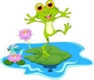 Счастливый шарж зеленой лягушки на лист иллюстрация вектора