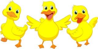 Счастливый шарж утки Стоковые Фото