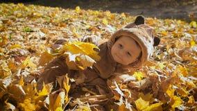 Счастливый шаловливый ребенок outdoors Милый ребенк в костюме медведя лежит в желтых листьях осени Мальчик в первый раз внутри акции видеоматериалы