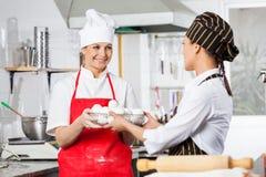 Счастливый шеф-повар давая контейнер вполне яичек к Стоковые Изображения