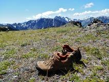 Счастливый Hiker Стоковые Изображения RF