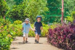 2 счастливых брать бежать совместно на пути парка в тропическом парке Стоковое Изображение RF